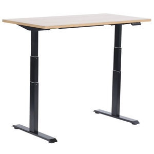 Best Seller Healthy Solution Dual Motor Two Segments Standing Desk
